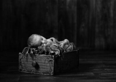 newborns-06-Trevor-Lucy-Photography-WEB