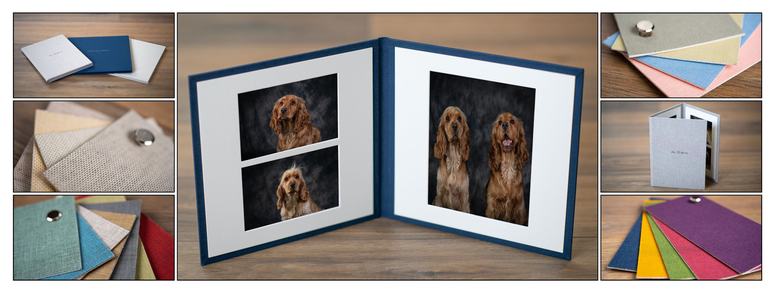 Pet Photos Trevor Lucy Photography Fermanagh Omagh Donegal Enniskillen